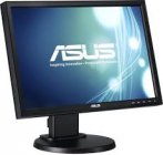 ASUS VW199TL - 19 Zoll